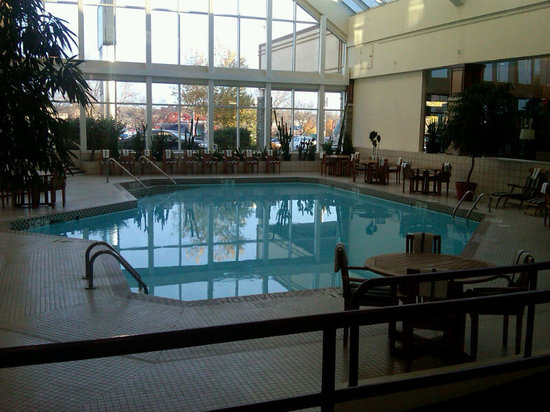 Crowne Plaza Hotel Madison: This is one of those hotels with a design that seemed to place the pool more for looks than for