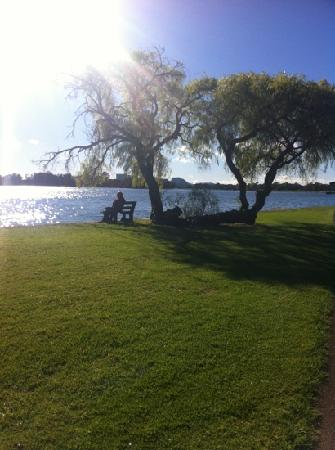 Swan River: memorized by the view xx