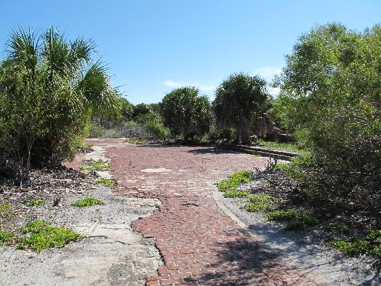 Egmont Key State Park: Path through the old town/fort