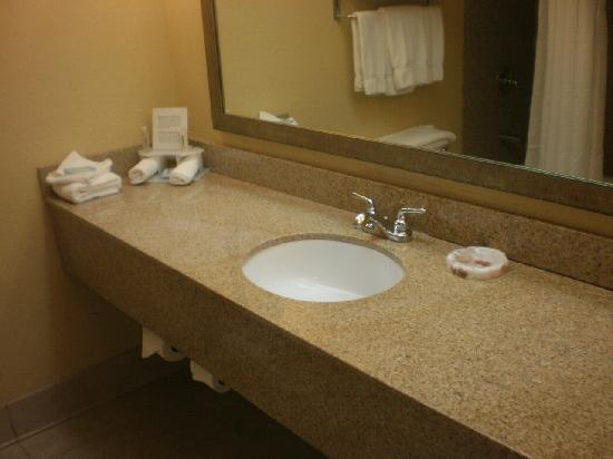 Holiday Inn Express Miami Airport Central-Miami Springs: bathroom