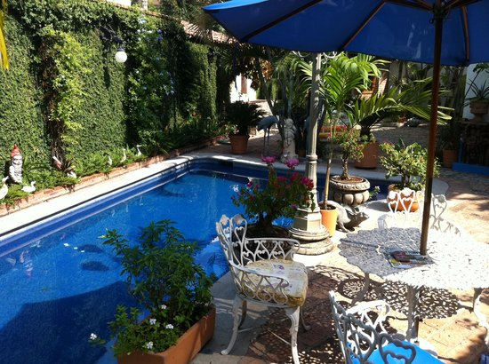 Casa Fantasia: Pool and a garden