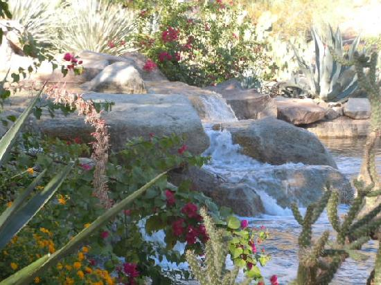 The Canyon Suites At The Phoenician: Beautifu gardens