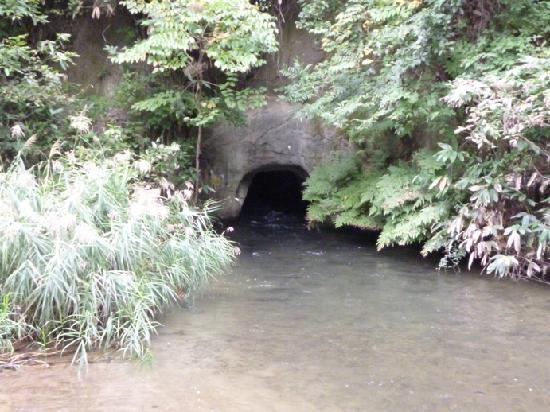 Iimoriyama: 戸ノ口洞穴