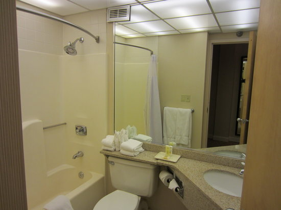 Crowne Plaza Knoxville: Bathroom