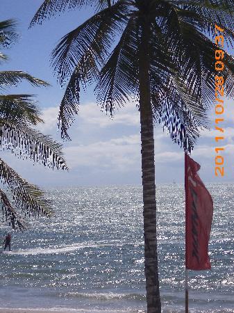 Hotel Surf Paradise: vista desde la habitación