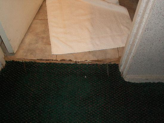 Howard Johnson Phoenix Airport/Downtown Area: Tile/carpet border at bathroom