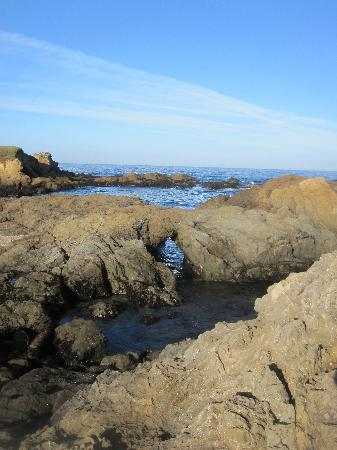 Glass Beach: interesting rocks