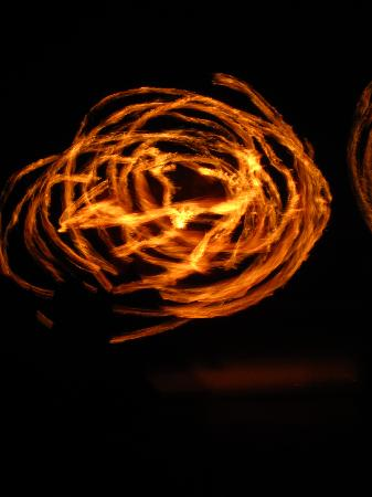 Blue Parrot : Fire Dancers