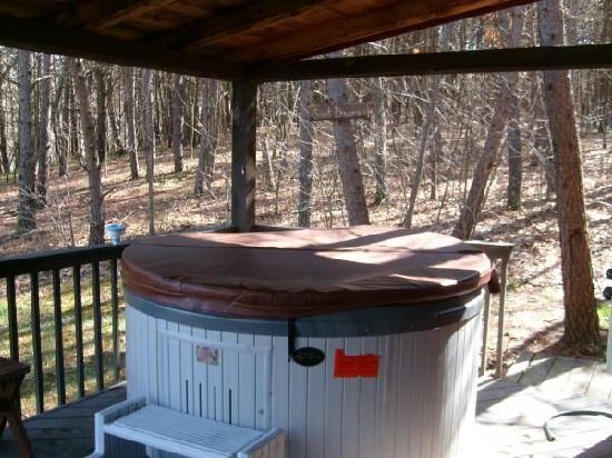 Blue Rose Cabins: The hottub