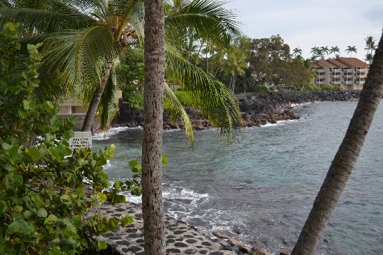 Kona Tiki Hotel: view from our room