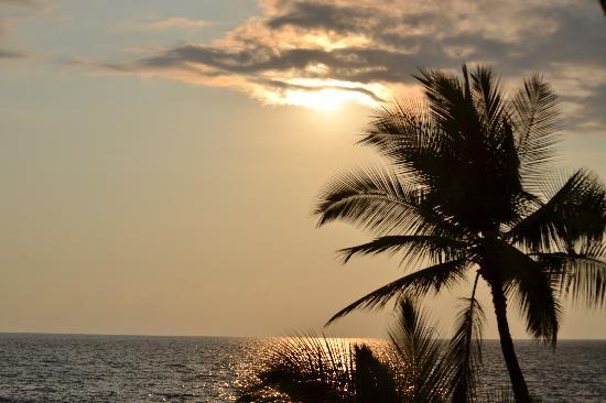 Kona Tiki Hotel: another view from our lanai