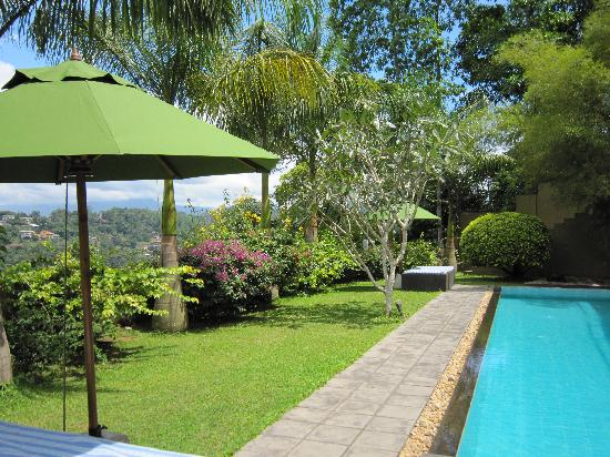 Baramba House: The pool area
