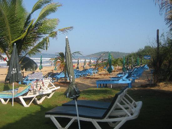 Chalston Beach Hotel Goa