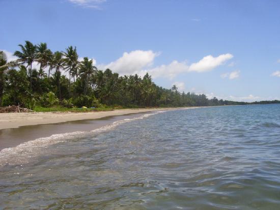 ULTIQA at Fiji Palms Beach Resort : The beach