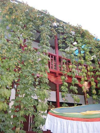 Hotel Yak Tail: courtyard 2
