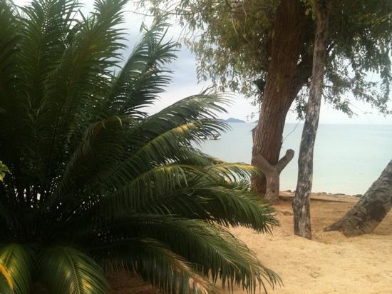 Lokobe Nature Special Reserve: nosy sakatia - madagascar