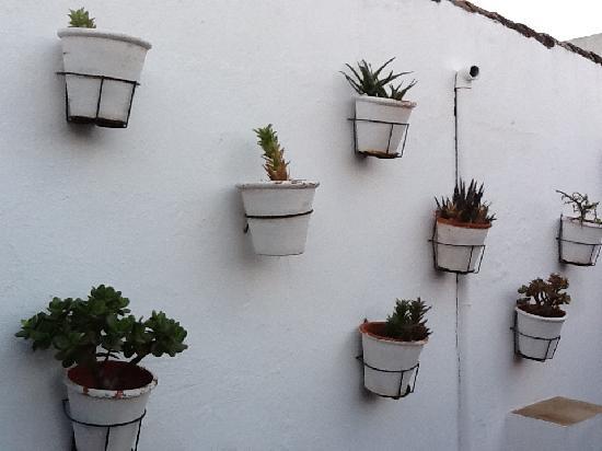 Hospes Las Casas del Rey de Baeza Sevilla: Rooftop pool area