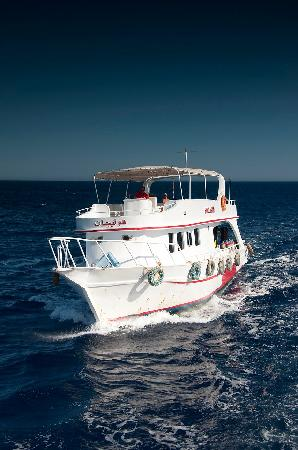 Oonas Dive Club Hotel: Daily dive boats