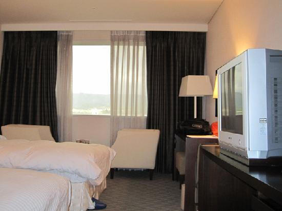 Hotel Airport: My room