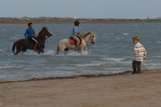 Dar el Foursan: ride
