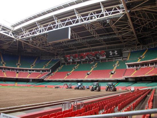 Principality Stadium : new turf being laid