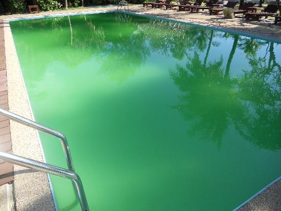 The Kib Resort & Spa: This was one of the disgusting pools