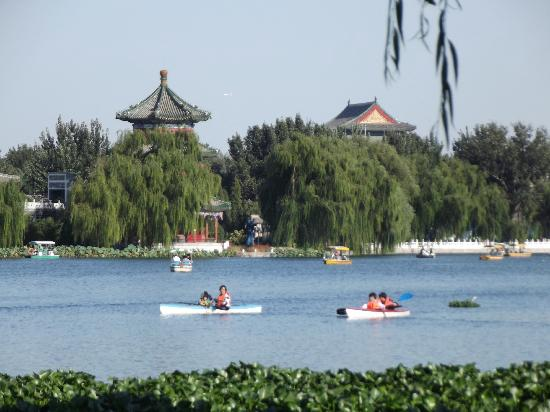 Soluxe Sunshine Courtyard Hotel: Lake walking distance from hotel.