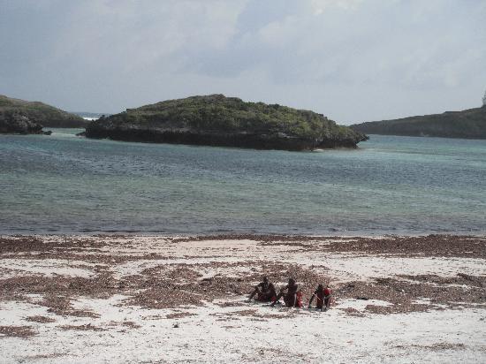 barracuda inn - la spiaggia a settembre