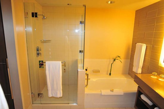 Fairmont Pittsburgh: shower and tub