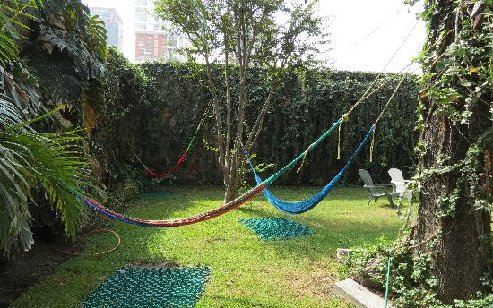 Hostel Guadalajara Hospedarte: hammocks in the backyard