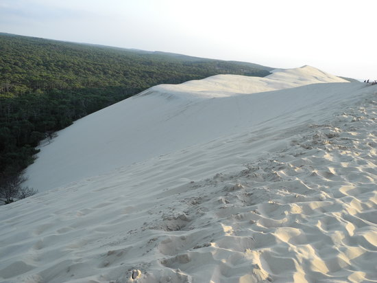Dune du Pilat: .....unico.....