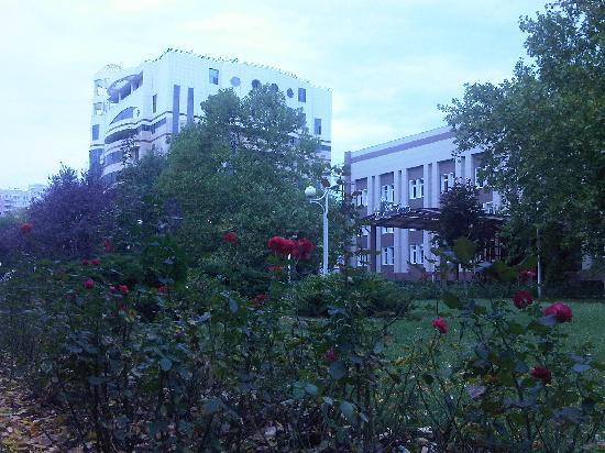 Platan Yuzhniy Hotel: view from the street
