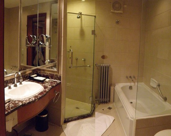 Broadway Mansions Hotel : The bathroom (two pictures combined)