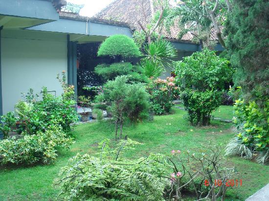 Yani Hotel : giardino