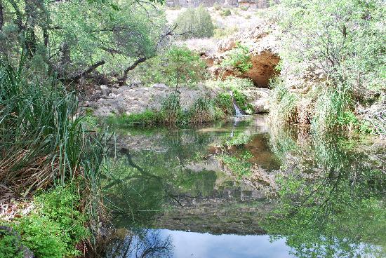Sitting Bull Falls Picture