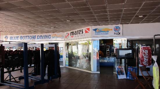 Blue Bottom Diving : The dive centre