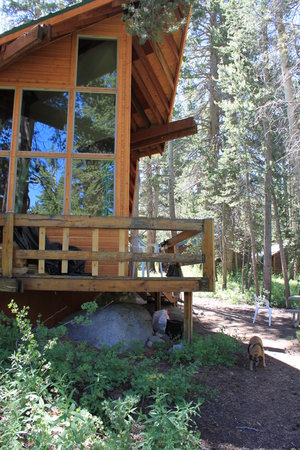 Rock Creek Lodge: Big Picture Windows of Cabin 14