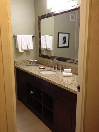 Doubletree by Hilton Chicago Magnificent Mile: room 415 bathroom