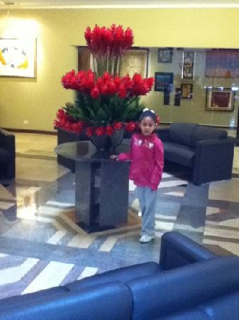 Akros Hotel: lobby del hotel