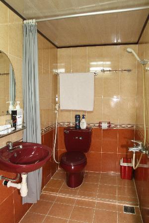 Thien Vu Hotel: Bathroom with shower only