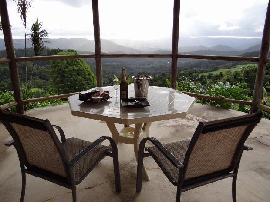 Artisan Spa Views Bed & Breakfast: patio view