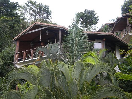 "Tulemar Resort: Our luxury ""tree house"""