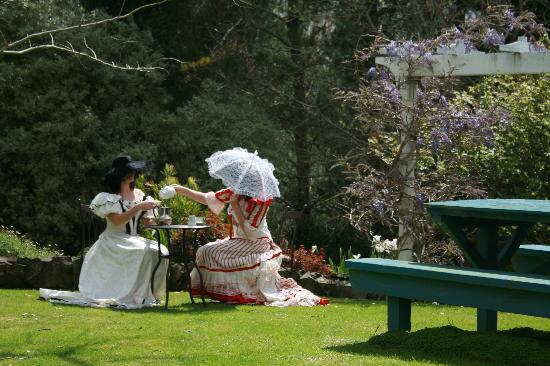 The Old Post Office Guest House: Afternoon tea in the garden