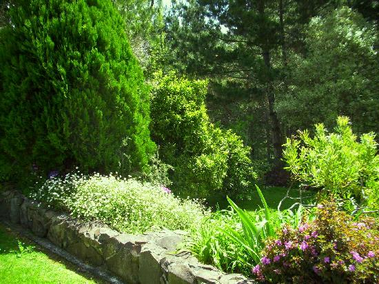 The Old Post Office Guest House: Sit in our green and peaceful garden