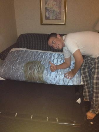 Best Western Plus Ontario: he refused to sleep on the pullout.