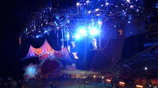 The Ringling : Trapeze