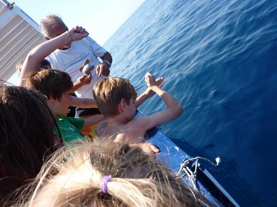 Masaniello Tourist: More fishing