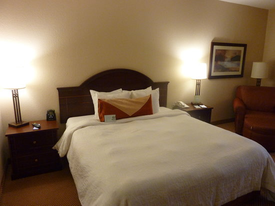 Hilton Garden Inn Wisconsin Dells: Room Photo 1