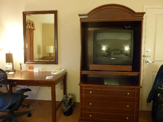 Hilton Garden Inn Wisconsin Dells: Room Photo 3