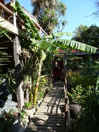 Bamboo the Guesthouse: Garten